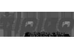 tipico Logo grau